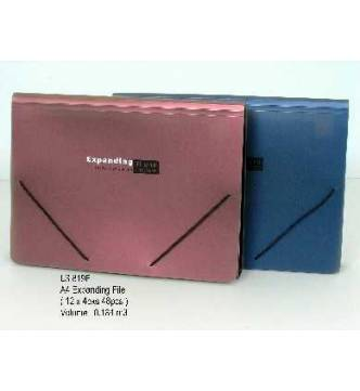 A4 Expanding 12 pocket File.Elsoon 819.